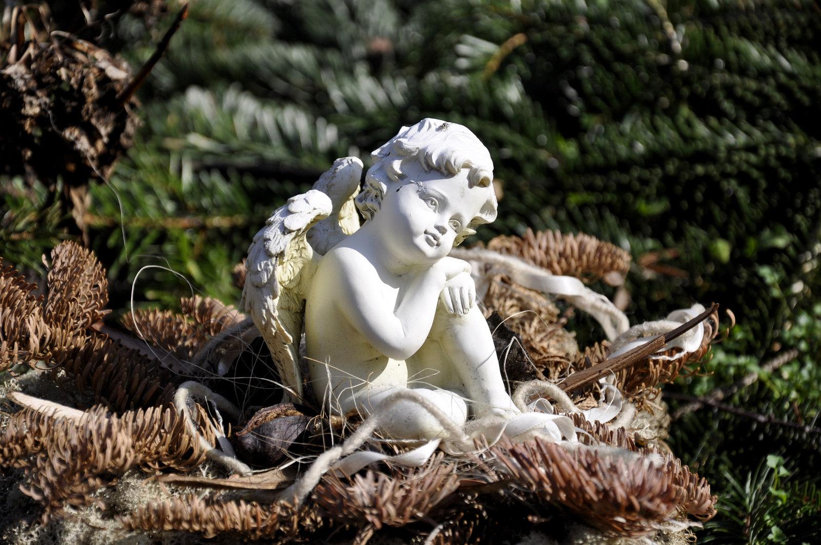 Памятники в Туле «Камень на век»